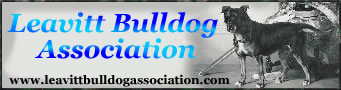 Registered with the Leavitt Bulldog Association